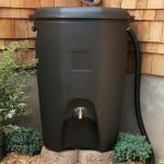 Cisterna externa